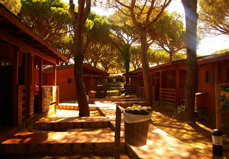 Camping Doñana Huelva
